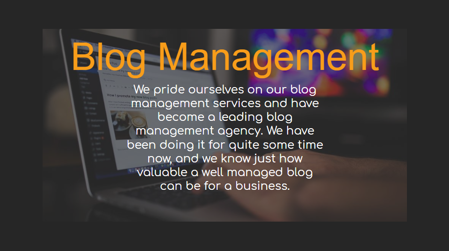 Blog Management - Our Packages Explained