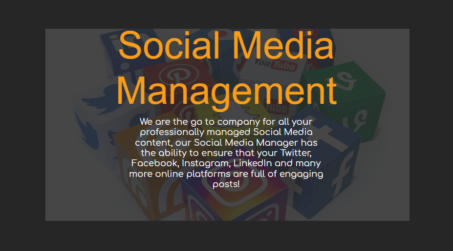 Social Media Management - Our Packages Explained